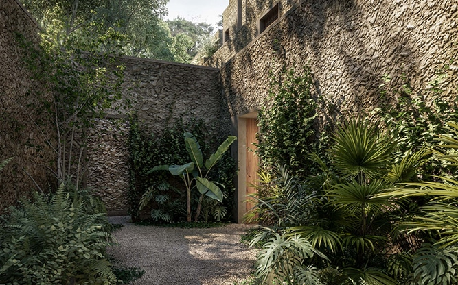courtyard filled with green plants